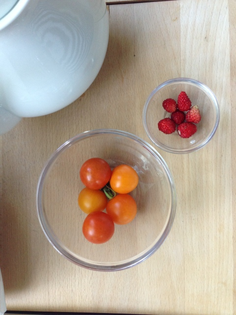 firsttomatoesandstrawberries
